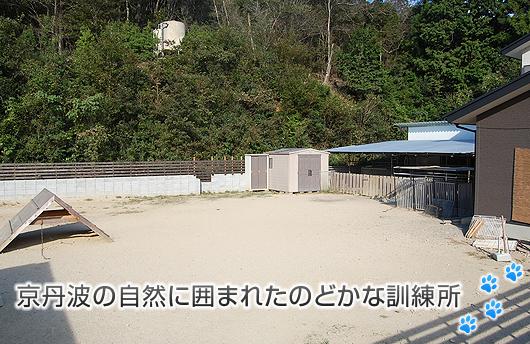 京丹波の自然に囲まれたのどかな訓練所